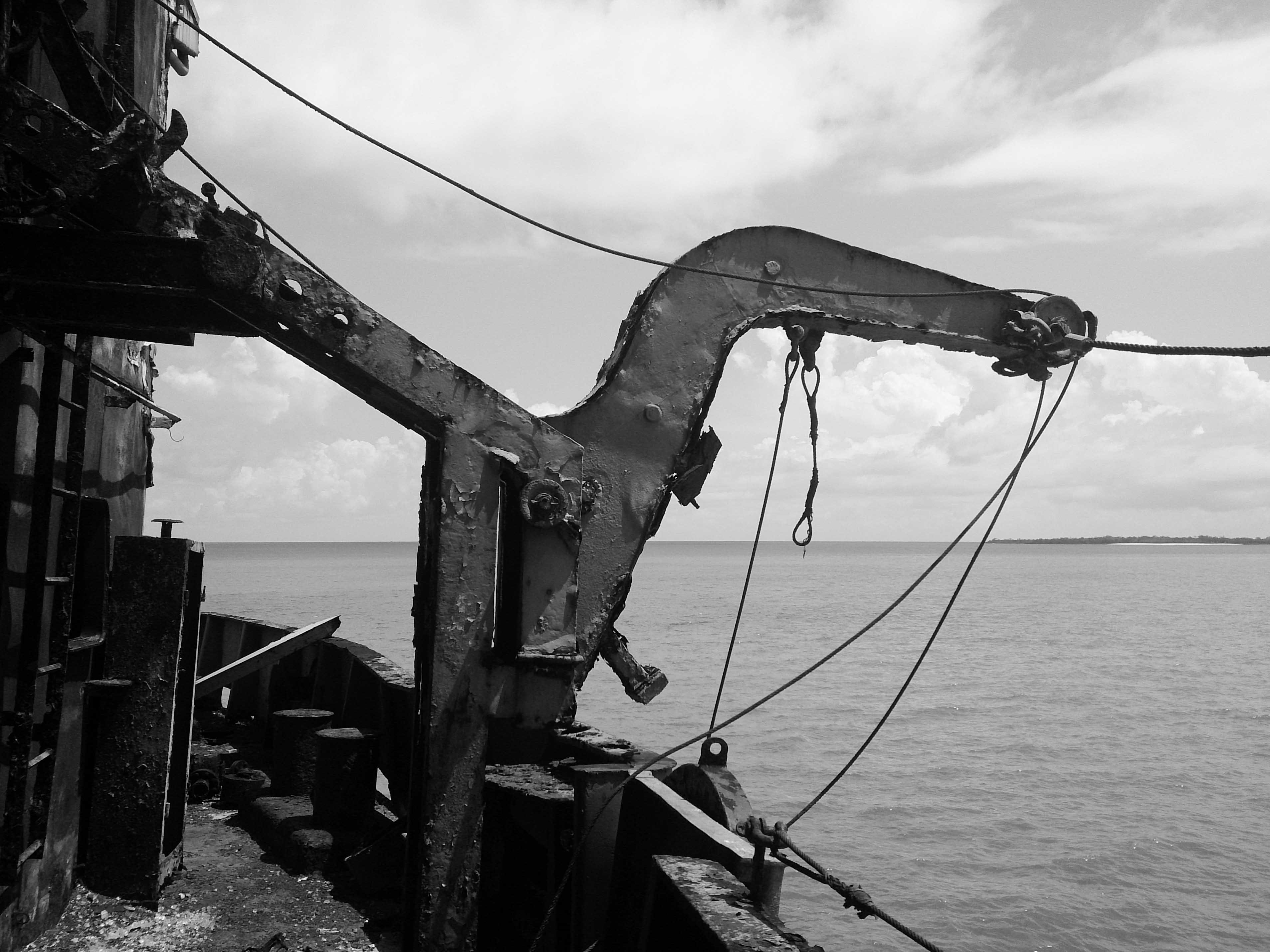 Life boat crane