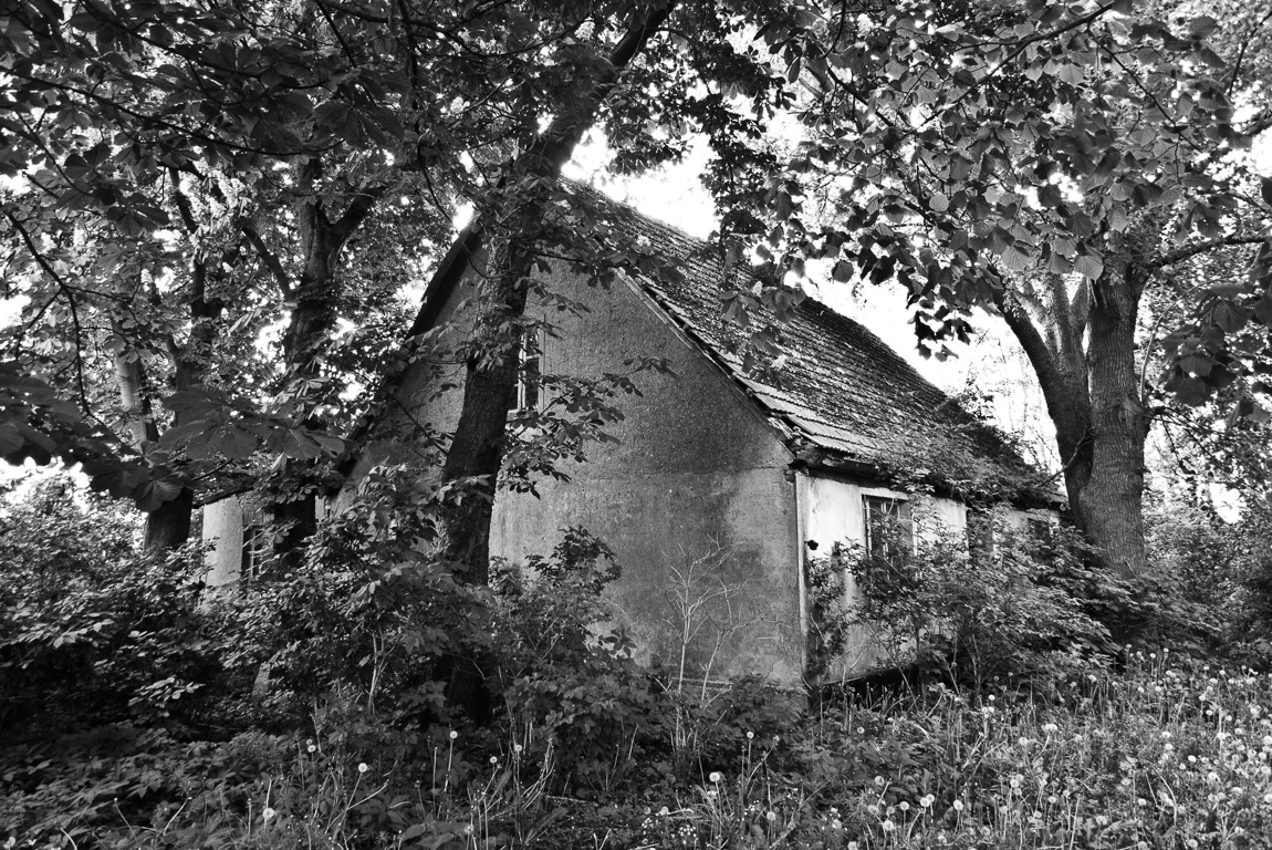 Bauernhof, 2015