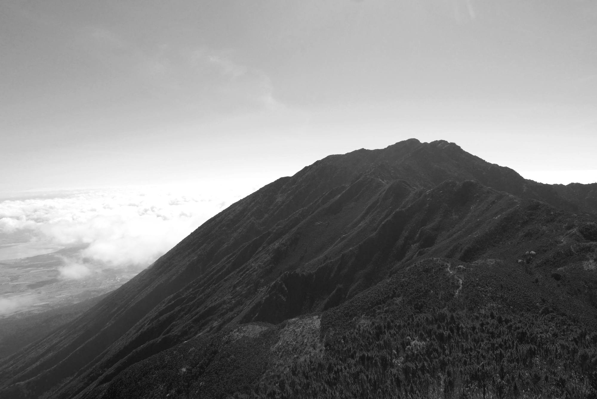 Mt. Hanang slopes