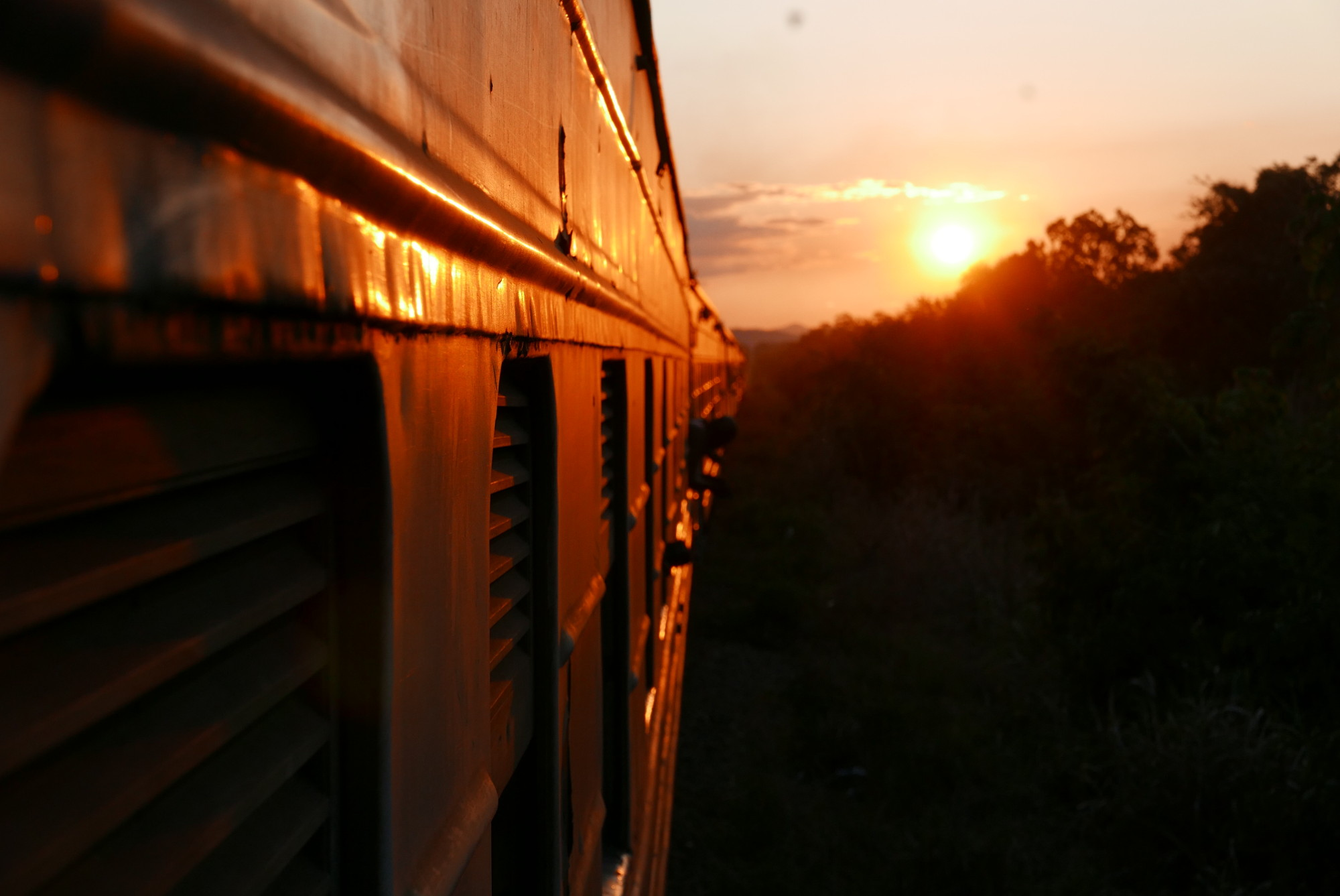 Selous passage, Tazara train